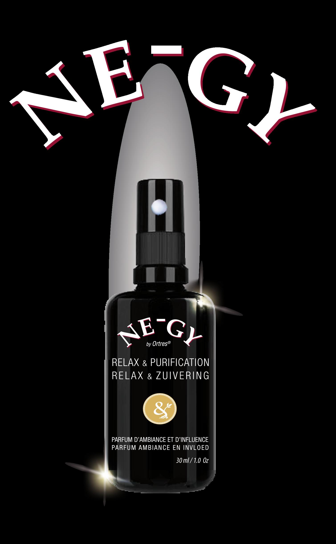 Ne-Gy NeGy Relaxation et Purification